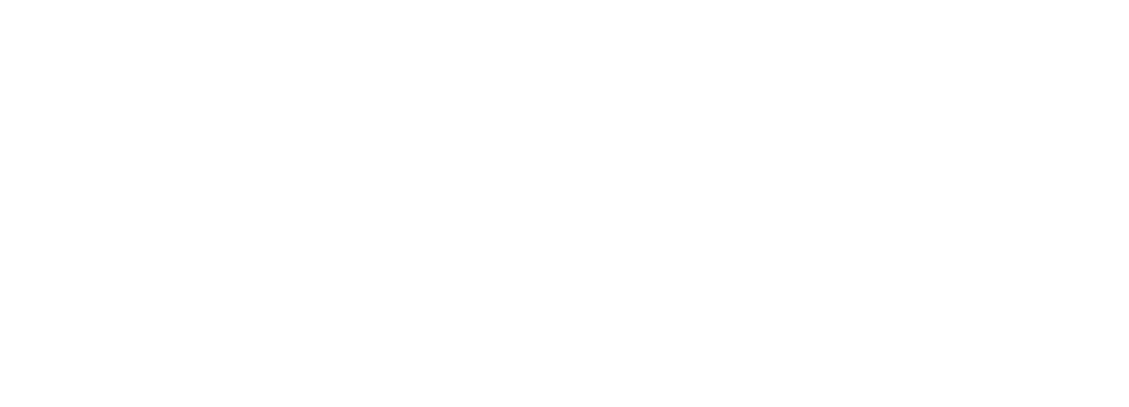 Logo IRSI Excelia Group